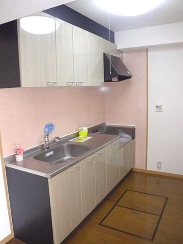 シングレート・ヒルズ / 101号室キッチン