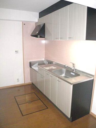 シングレート・ヒルズ / 102号室キッチン