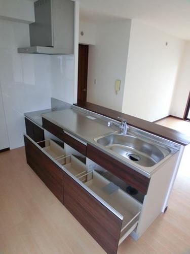 シングレート・ヒルズ / 203号室キッチン