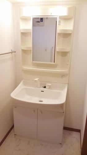 ネオパレス長者原Ⅱ / 307号室洗面所