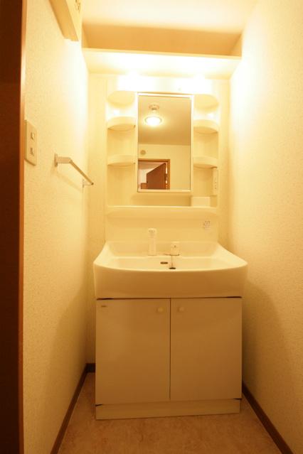 シャトレ東 / 203号室洗面所