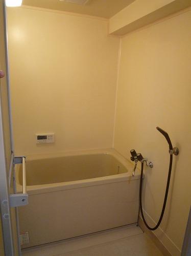 コープセンタービレッジ / 102号室トイレ