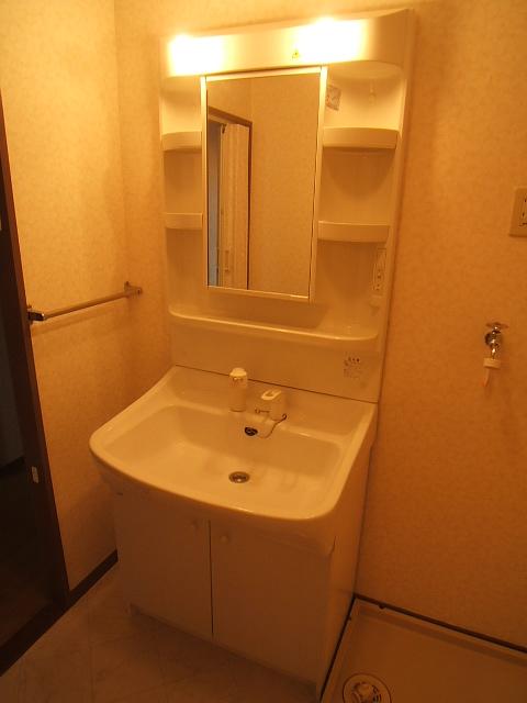 コープセンタービレッジ / 201号室洗面所