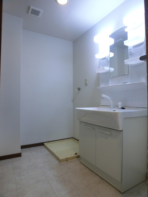 エクセレント田口 / 403号室洗面所