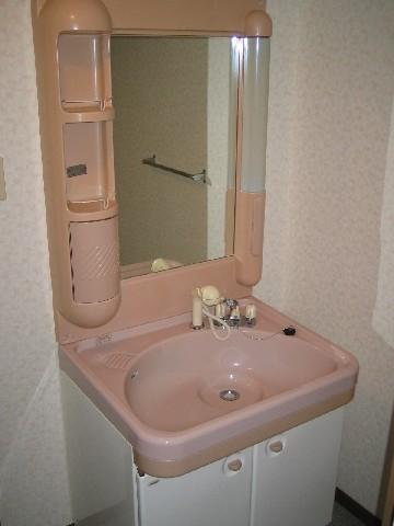 ハイ・コート(ペット可) / 603号室洗面所