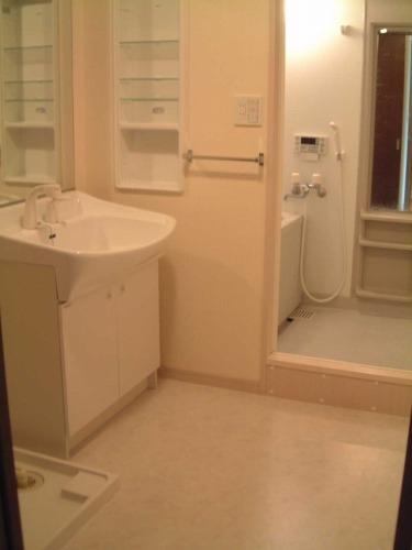 グランシャリオ / 502号室洗面所