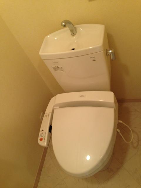 リバーランドⅥ / 202号室トイレ
