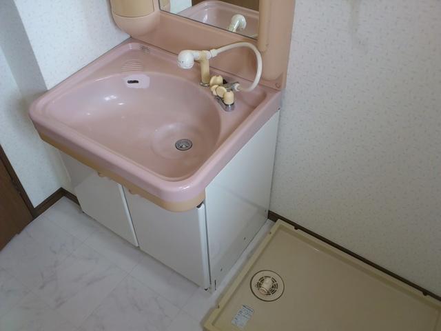 グランドール藤本 / 105号室洗面所