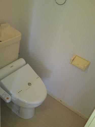 メロディーハイツ / 101号室トイレ