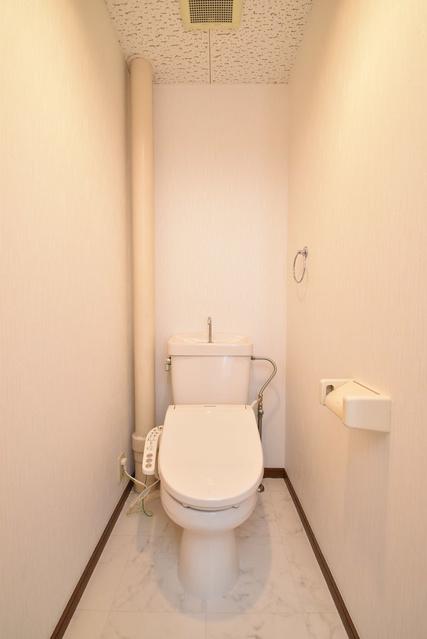 タウンコート志免 / 401号室トイレ
