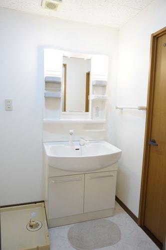 コムフォート・シティ / 101号室洗面所