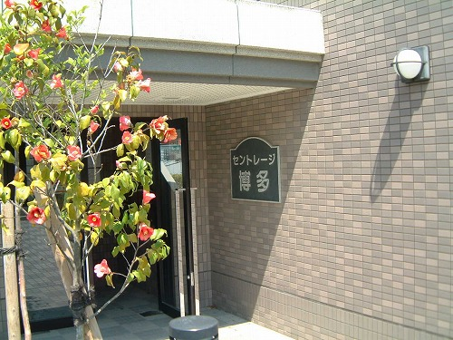 セントレージ博多 / 202号室