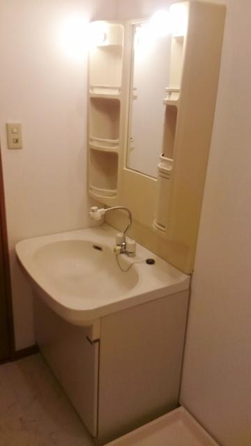 ティアラ 安川 / 101号室洗面所