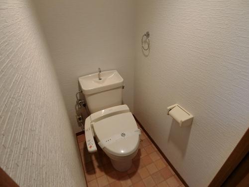 サンヒルズTAKEDAⅡ / 301号室トイレ