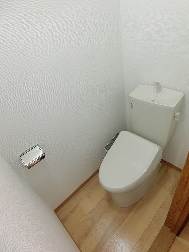 コーポ上野 / 201号室トイレ