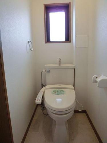 キャピタル長者原 / 405号室トイレ
