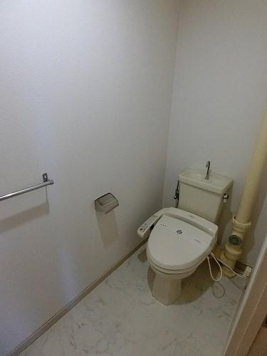 サンハイム / 501号室トイレ