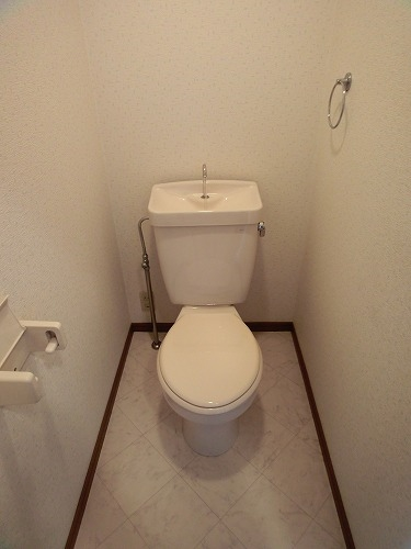ラフィーネ篠栗 / 402号室トイレ