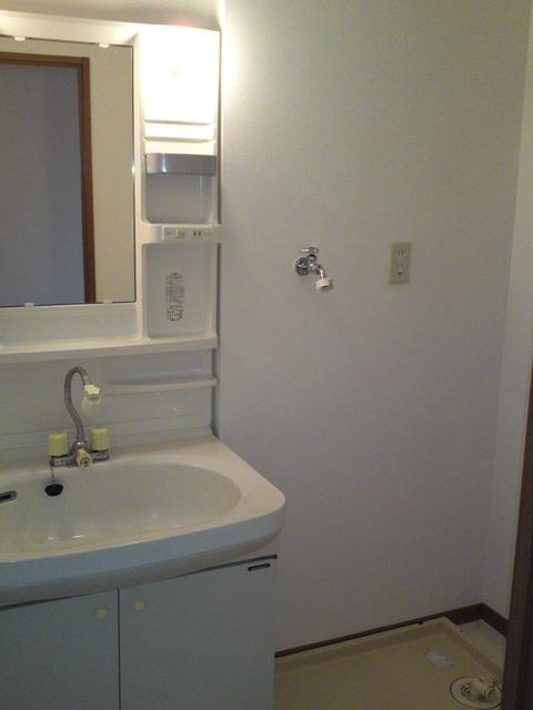 メロディハイツ戸原 / B-201号室洗面所