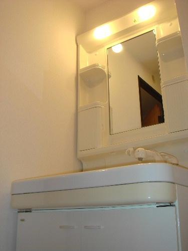 アイビーハイツⅡ / 203号室洗面所