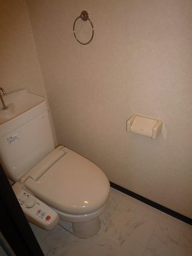 スクレーパー東 / 202号室トイレ