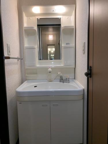 スクレーパー東 / 303号室洗面所