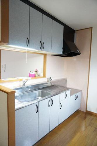 シャルム空港南 / 205号室キッチン