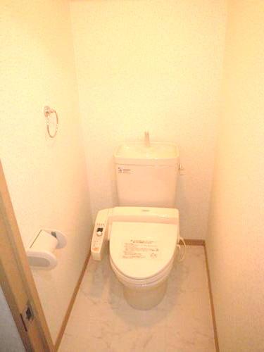 シングレート・ヒルズ / 202号室トイレ