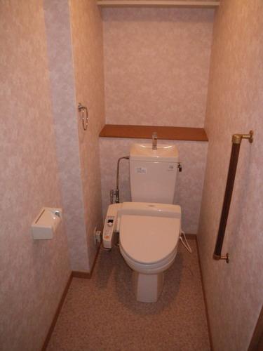 チュリス空港東 / 402号室トイレ