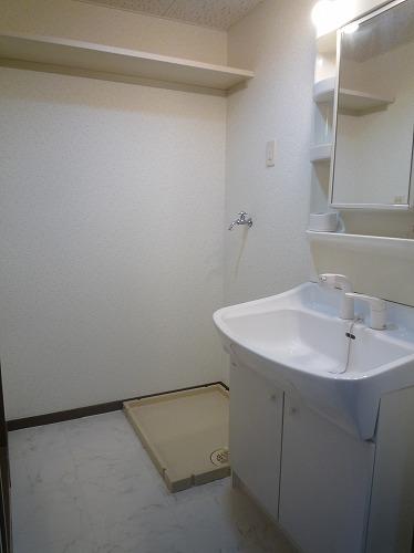 コープセンタービレッジ / 203号室洗面所