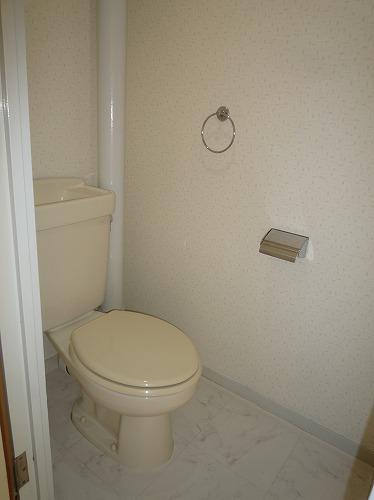 グレイシャス長尾 / 201号室トイレ