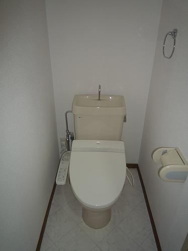 グランベルデ丸善 / 205号室トイレ