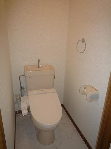 グランベルデ丸善 / 303号室トイレ