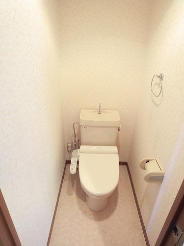 グランベルデ丸善 / 401号室トイレ