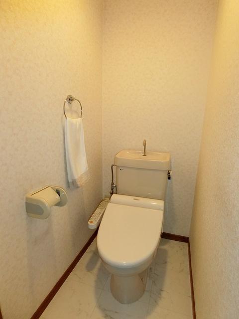グランベルデ丸善 / 602号室トイレ