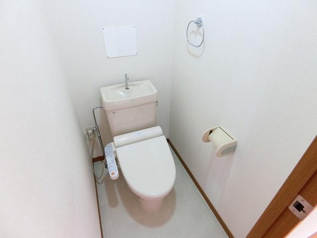 グランベルデ丸善 / 902号室トイレ
