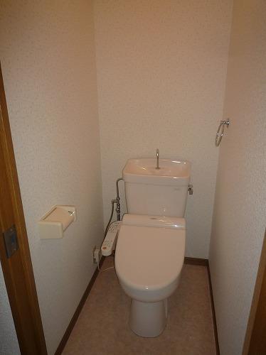 サークルフロント / 203号室トイレ