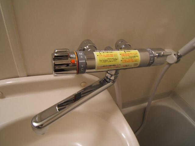 ルミノスコート / 401号室洗面所