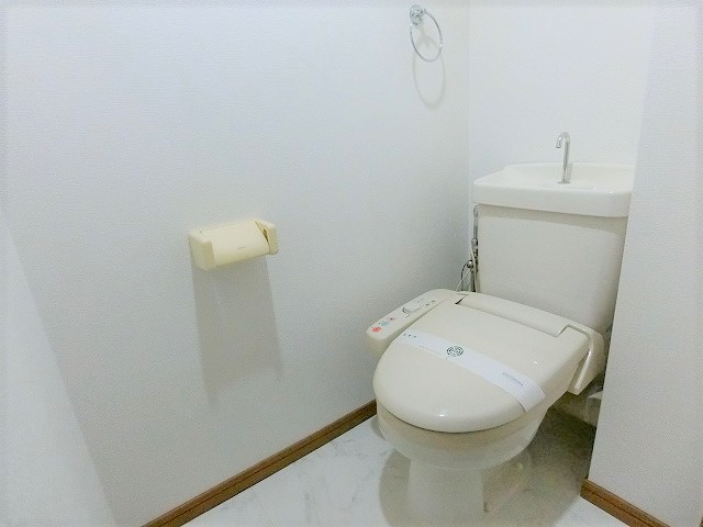 ルミノスコート / 501号室トイレ