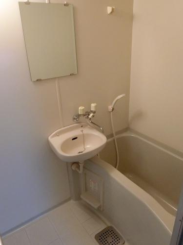 ルミノスコート / 805号室玄関