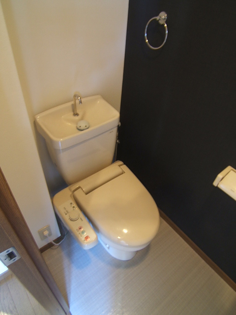 ルミノスコート / 805号室トイレ