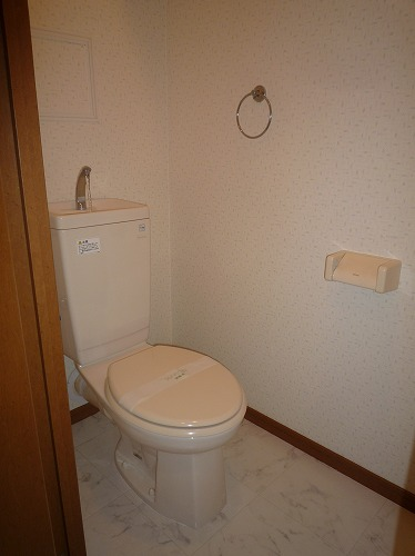 リバーランド箱崎Ⅴ / 601号室トイレ