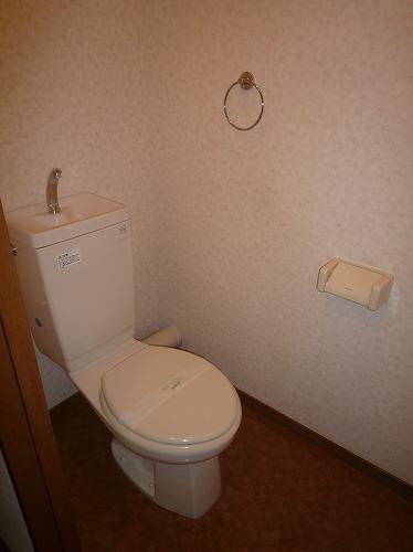 リバーランド箱崎Ⅴ / 602号室トイレ