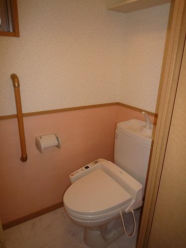 マノワール箱崎 / 203号室トイレ