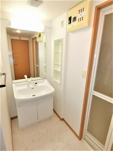 スターマイン / 802号室洗面所