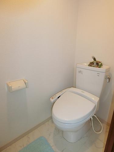 ラ・ネージュ / 202号室トイレ