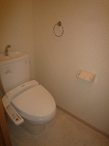 リバーランドⅥ / 302号室トイレ