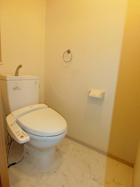 リバーランドⅥ / 502号室トイレ