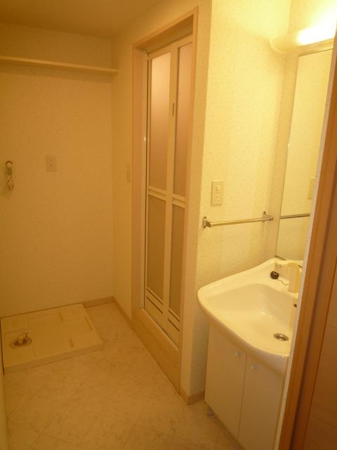 メゾンスペース / 201号室洗面所