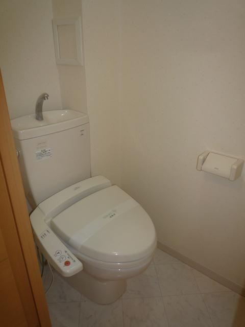 メゾンスペース / 305号室トイレ